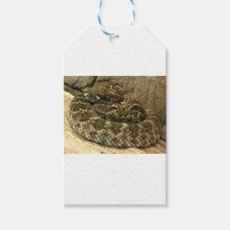 コイル状のヘビ ギフトタグ