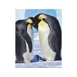コウテイペンギン家族 キャンバスプリント