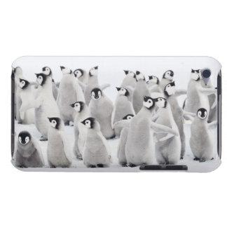 コウテイペンギン(コウテイペンギン属のforsteri)のグループ Case-Mate iPod touch ケース