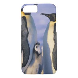 コウテイペンギン(コウテイペンギン属のforsteri)の大人 iPhone 8/7ケース