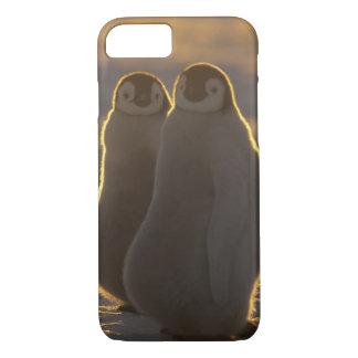 コウテイペンギン、コウテイペンギン属のforsteri)、2 iPhone 8/7ケース