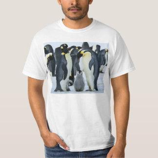 コウテイペンギン Tシャツ