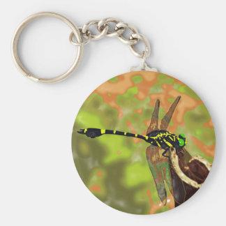 コオニヤンマ dragonfly ベーシック丸型缶キーホルダー