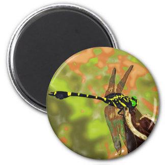 コオニヤンマ dragonfly マグネット