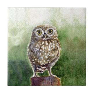 コキンメフクロウの水彩画の絵画 タイル