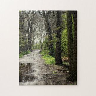 コケのぬれた雨水溜道は木の森林を覆いました ジグソーパズル