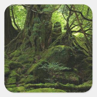 コケのジャングルの森林 スクエアシール