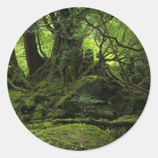 コケのジャングルの森林 ラウンドシール