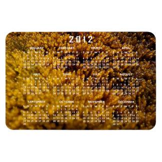 コケの点検; 2012カレンダー マグネット