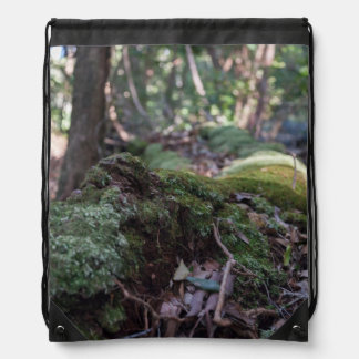 コケは森林バックパックの落ちたな木を覆いました ナップサック