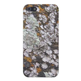コケむした花こう岩 iPhone 5 カバー