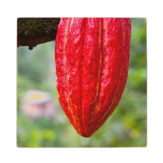 ココアポッドの赤 ウッドコースター