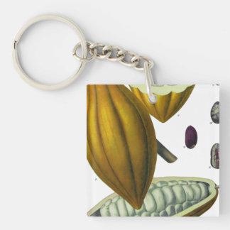 ココア豆のヴィンテージの絵のkeychain キーホルダー