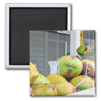 ココナッツ水Key West FLのココナッツ磁石 マグネット