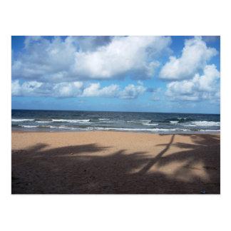 ココヤシの木の郵便はがきのMayaroのビーチの影 ポストカード