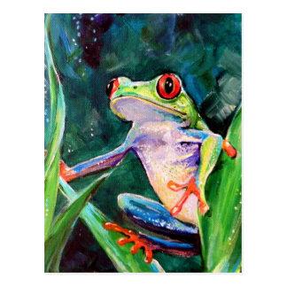 コスタリカのアマガエル ポストカード