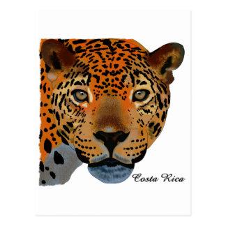 コスタリカのジャガー ポストカード