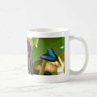 コスタリカのマグ コーヒーマグカップ
