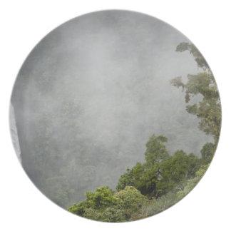 コスタリカの山の雲の森林はLaに近づきます プレート