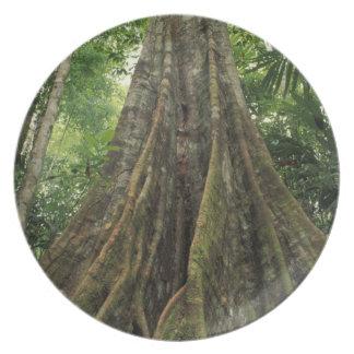 コスタリカの支えられるCorcovadoの国立公園 プレート