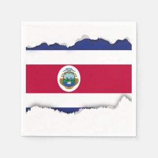 コスタリカの旗 スタンダードカクテルナプキン
