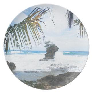 コスタリカの海岸 プレート