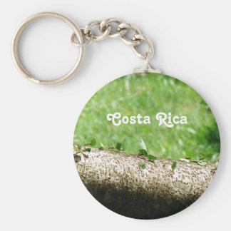 コスタリカの葉のカッターの蟻 キーホルダー