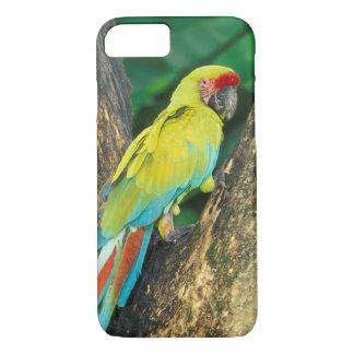 コスタリカのAra Ambiguaの素晴らしい緑のコンゴウインコ iPhone 8/7ケース