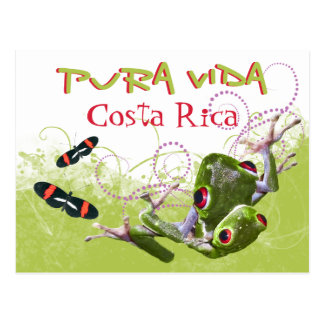 コスタリカ人のPura Vidaのアマガエルの郵便はがき ポストカード