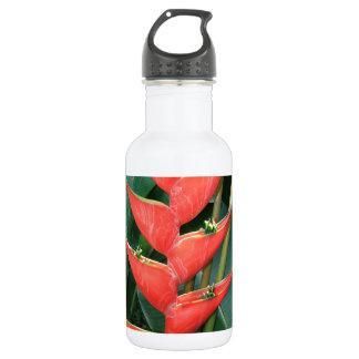 コスタリカ愛からの花のHeliconiaのタケ ウォーターボトル