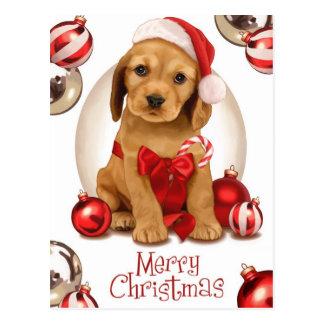 コッカースパニエルのクリスマス ポストカード