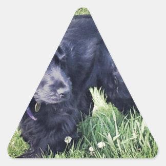 コッカースパニエルの子犬 三角形シール