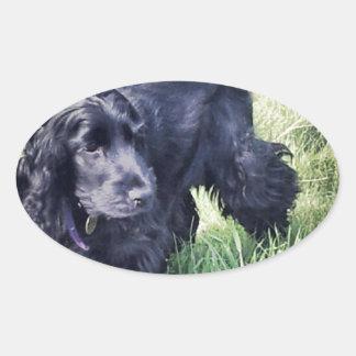コッカースパニエルの子犬 楕円形シール