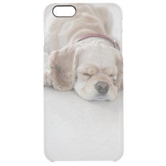 コッカースパニエル犬の睡眠 クリア iPhone 6 PLUSケース