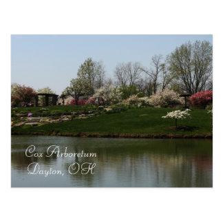 コックス植物園、デイトン、オハイオ州 ポストカード