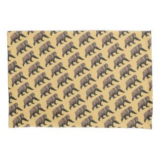 コディアックヒグマの画像 p1_13