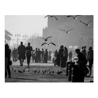 コニーアイランドの遊歩道の白黒写真 ポストカード