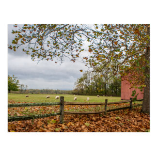 コネチカットの秋の農場の郵便はがき ポストカード
