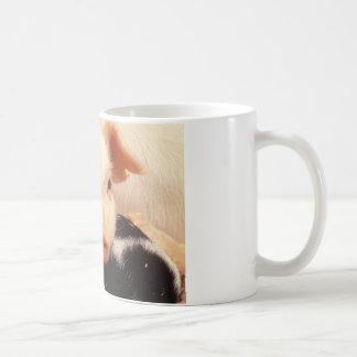 コブタのブタの愛らしい顔の鼻 コーヒーマグカップ