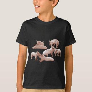 コブタ、ブタ、 Tシャツ