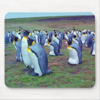 コロニーのコウテイペンギン マウスパッド