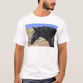 コロラド州の空を持つFriesian Mare女性 Tシャツ