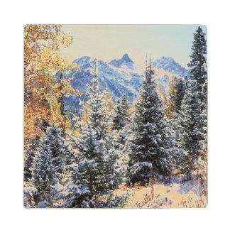 コロラド州、サンファン山、最初雪 ウッドコースター