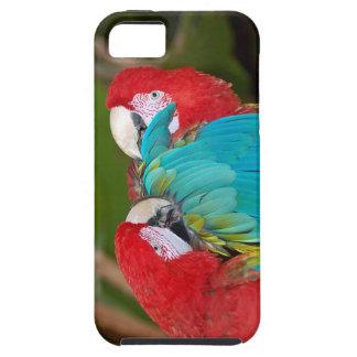 コンゴウインコのオウムのプリントのiphoneカバー iPhone SE/5/5s ケース