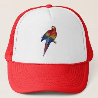 コンゴウインコのオウムの赤く黄色い青緑の鳥 キャップ