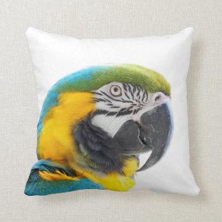 コンゴウインコのオウムの鳥の動物のエキゾチックな熱帯写真 クッション