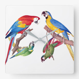 コンゴウインコのオウムの鳥の野性生物動物の柱時計 スクエア壁時計