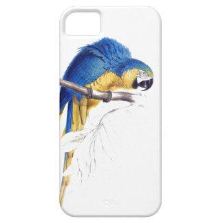 コンゴウインコのオウムの鳥の野性生物動物装置場合 iPhone SE/5/5s ケース