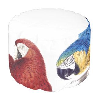 コンゴウインコのオウムの鳥動物の野性生物のPoufの枕 プーフ