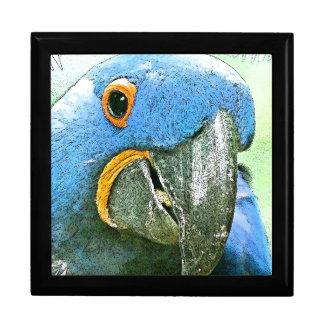 コンゴウインコのオウムの鳥動物の野性生物 ギフトボックス